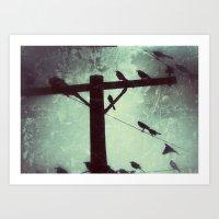birds of a powerline Art Print