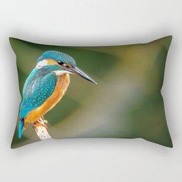 Impressive Marvelous Alcedo Atthis Fisher Fishing Bird Close Up Ultra HD Rectangular Pillow