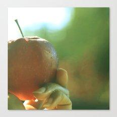 sunny fresh apple Canvas Print
