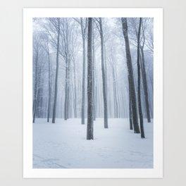 Foggy frozen winter forest Art Print