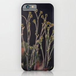 Kangaroo Paw Illuminated II iPhone Case