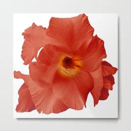 Sword Flower Red Yellow Metal Print