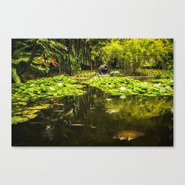 Turtle in a Lily Pond Canvas Print
