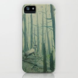With Canvas Above, We Fall From The Sky iPhone Case