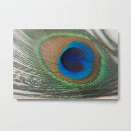 Peacock Eye - Fluid Nature Photography Metal Print