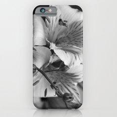 Freesia B&W Slim Case iPhone 6s