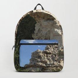 Mono lake Backpack