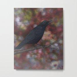 crow on a branch bokeh Metal Print