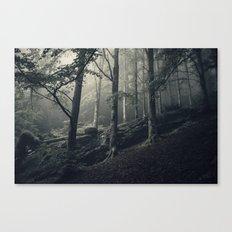 Theathre of dreams Canvas Print
