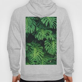Monstera leaf jungle pattern - Philodendron plant leaves background Hoody