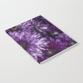 Purple Mums Notebook