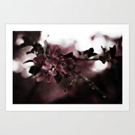 Cherry Cordial Art Print
