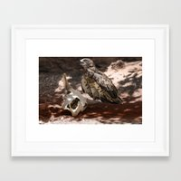 hawk Framed Art Prints featuring Hawk by Veronika