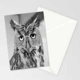 Who Who Me? Stationery Cards