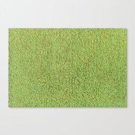 Phlegm Green Shag Pile Carpet Canvas Print
