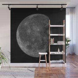 Moon (High Detail) Wall Mural