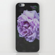 Summer Rose iPhone & iPod Skin