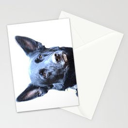Mitzi Now Stationery Cards