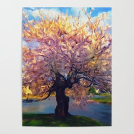 Blooming Tree Impressionist Painting Poster