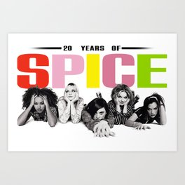 20 Years Of Spice: 1996 Art Print