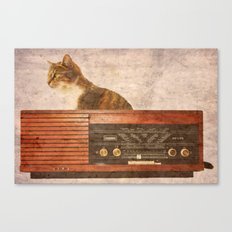The Cat and the Radio Canvas Print