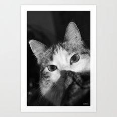 Stalking! Art Print