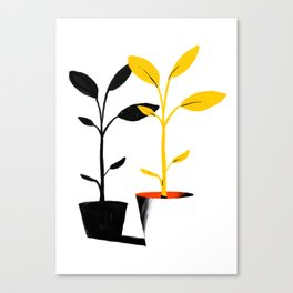 Shadow Plant Canvas Print