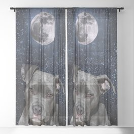 Pitbull Terrier and Moon Sheer Curtain