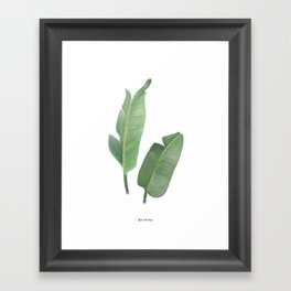 Banana tree leaves Framed Art Print