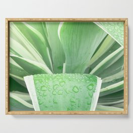 Green leaf photography Morning dew II Serving Tray