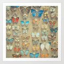 The Butterfly Collection II by cassiabeck