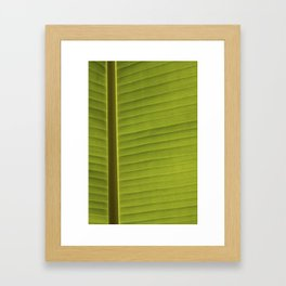 Banana Leaf II Framed Art Print