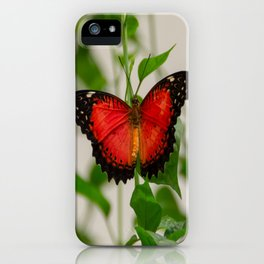 Red Lacewing Butterfly iPhone Case