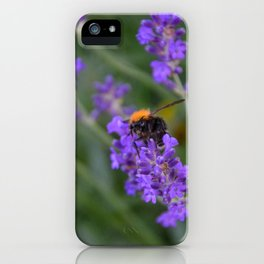 Bumblebee on Lavender iPhone Case