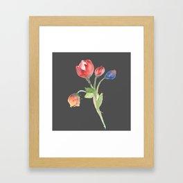 tulips (version #2) Framed Art Print