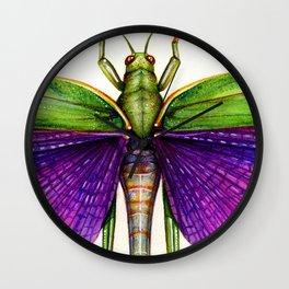 Titanacris albipes- Purple Winged Grasshopper Wall Clock
