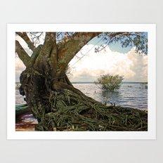 Tree in the Amazon Art Print