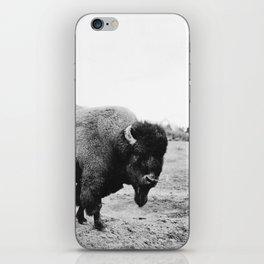 Alaska Bison iPhone Skin