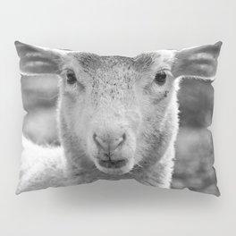 Lamb's portrait Pillow Sham
