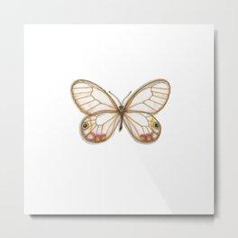 Butterflies: Esmeralda Metal Print