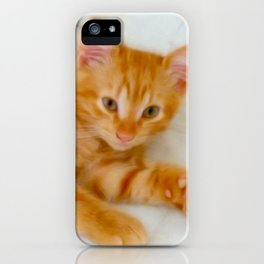 Quo - Kitten Photography By Giada Rossi iPhone Case