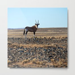 Namibian Oryx at the Dunes Metal Print