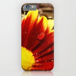 Floating Mum Nature / Floral / Botanical Photograph iPhone Case