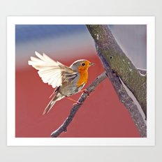 flying Bird Art Print