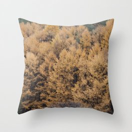 gently gentle #6 Throw Pillow