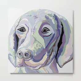 Weimaraner Denim Colors Metal Print