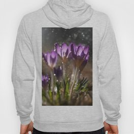 Crocuses in the morning rain Hoody