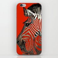 zebra iPhone & iPod Skins featuring Zebra  by Saundra Myles