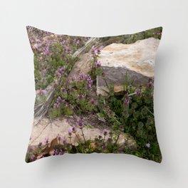 Rocks and Bugle Throw Pillow