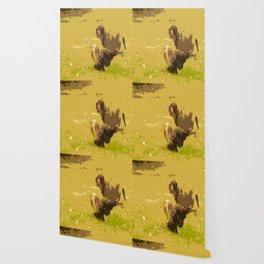 Dog's Running Race Wallpaper